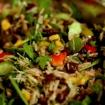 GF Vegan Tex Mex Salad