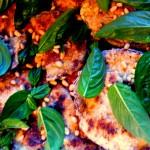 eggplant parmesan layers