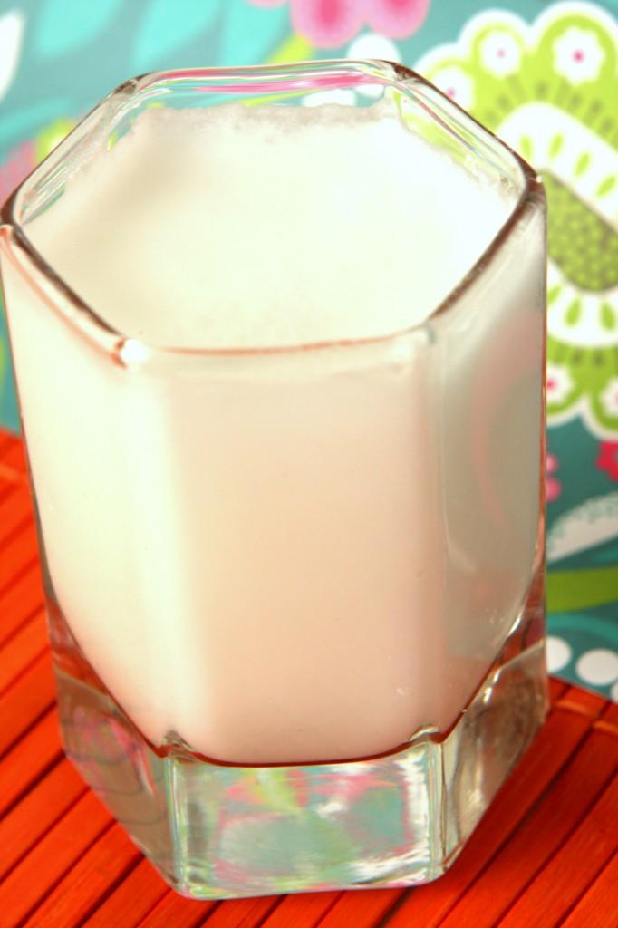 Easy Home Made Coconut Milk- MyRealFoodLife.com